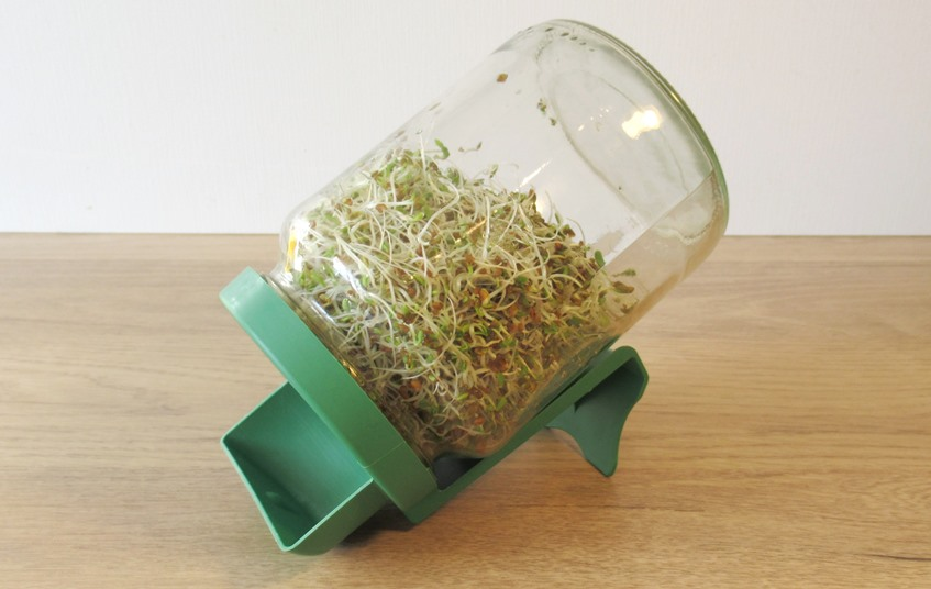 germoir à graines