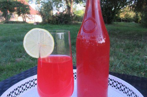Recette boisson fermentée à la framboise